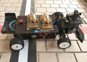 Robot Race 2019